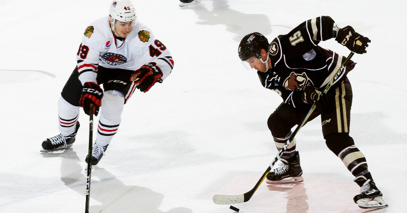 Game Preview: IceHogs at Bears, 7 p.m.