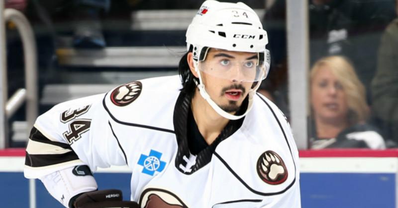Jonas Siegenthaler Re-assigned to Bears