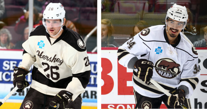 Two Bears Participating in IIHF World Championship
