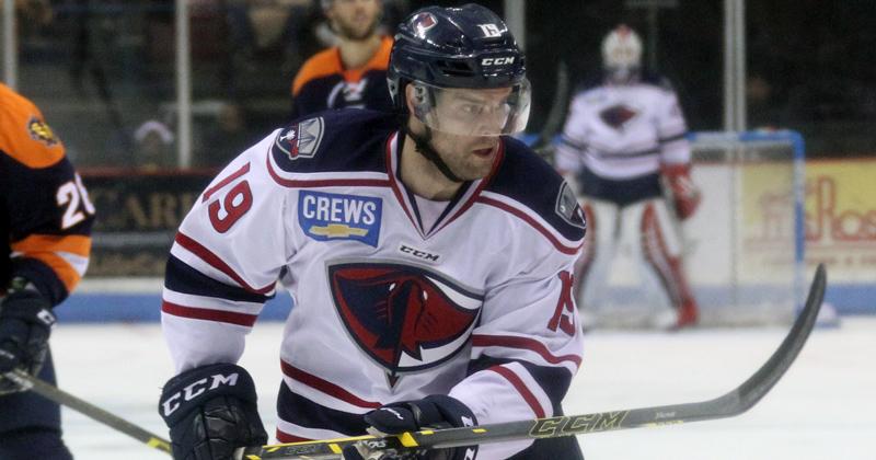 Bears Recall Kelly Zajac from South Carolina
