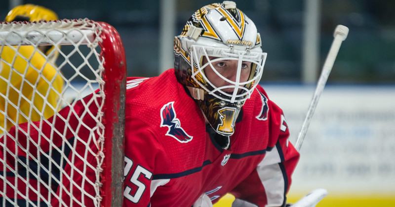 Bears Sign Goaltender Logan Thompson to AHL Contract