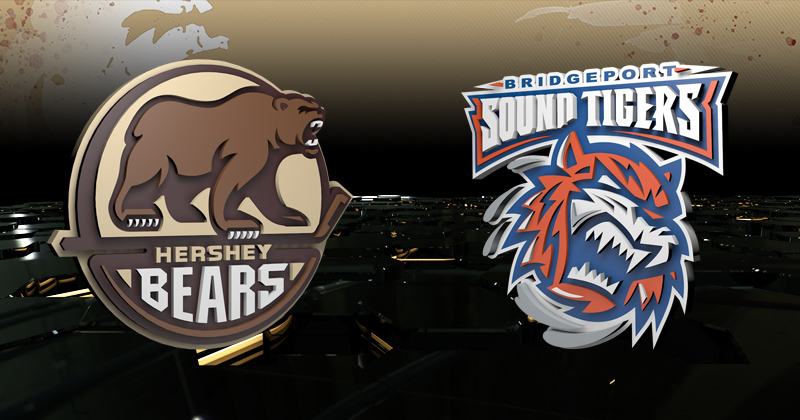 Game 1 Preview: Bears at Sound Tigers, 7 p.m.