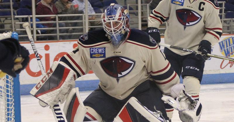 Bears Recall Goaltender Adam Morrison