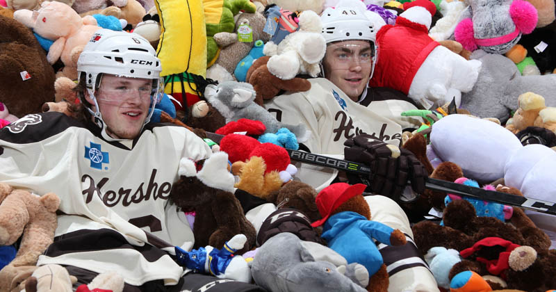 Bears Look to Set Teddy Bear Toss World Record Sunday
