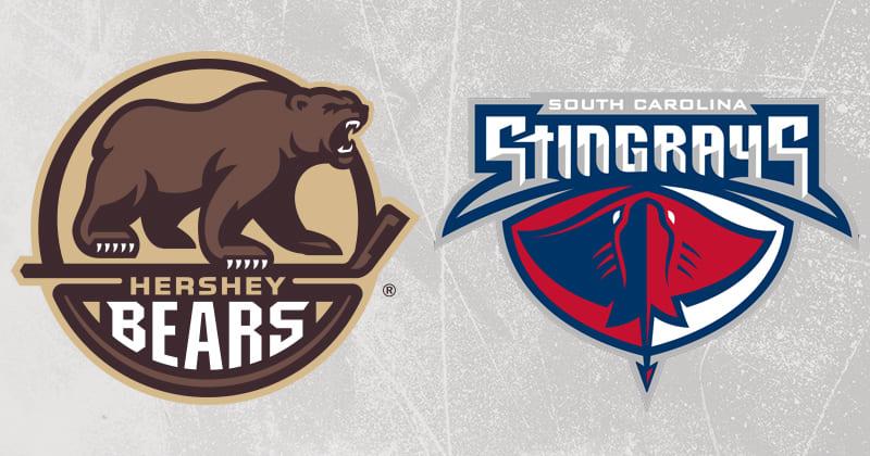 Stingrays Bears