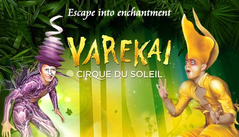 Cirque du Soleil Presents Varekai