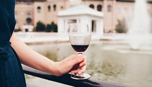 Wine Tasting Class Napa vs Sonoma