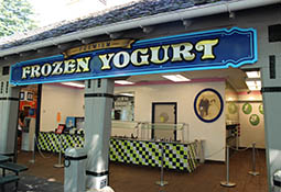 Premium Frozen Yogurt