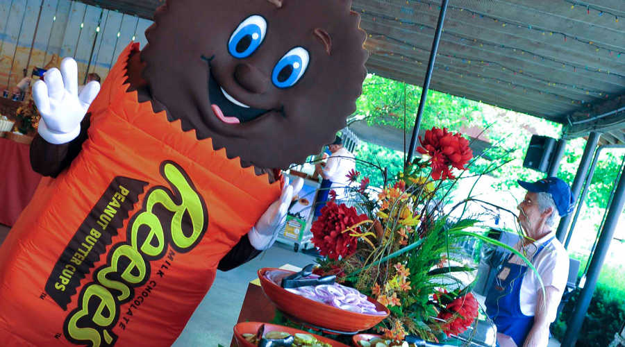 Reese Character at a catered Picnic
